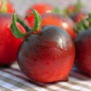 Paradicsom Jolie Coeur (H34 piros) (növény)